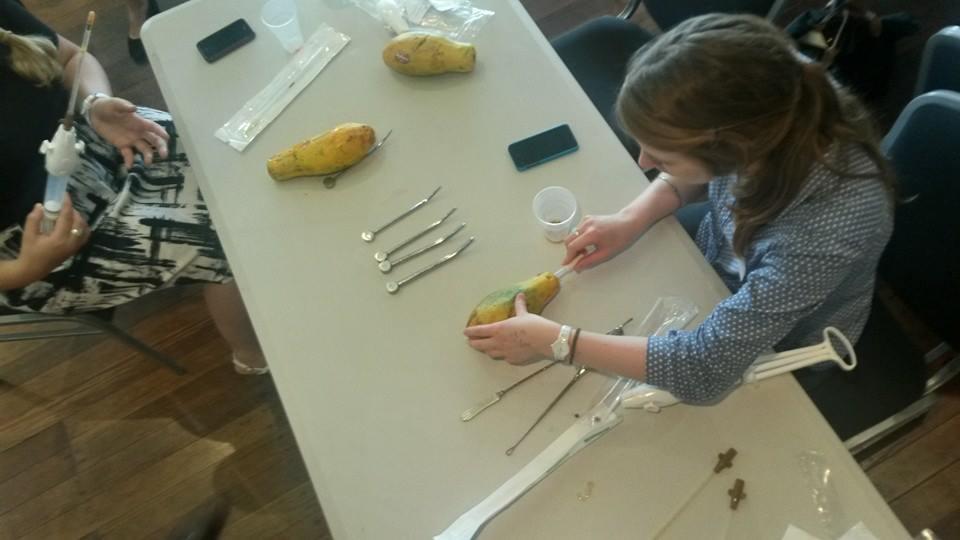 Papaya Workshop